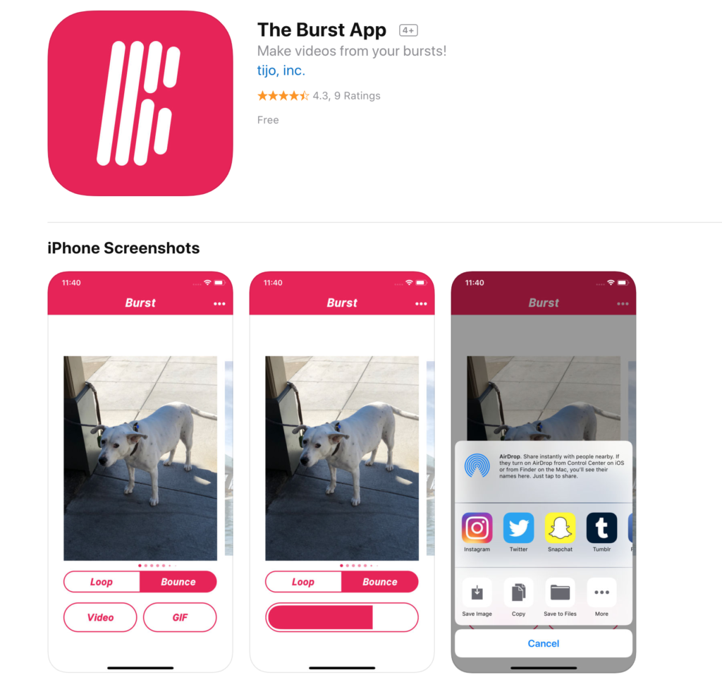 Convert Photo Bursts Into Video Or Gif With The Burst App